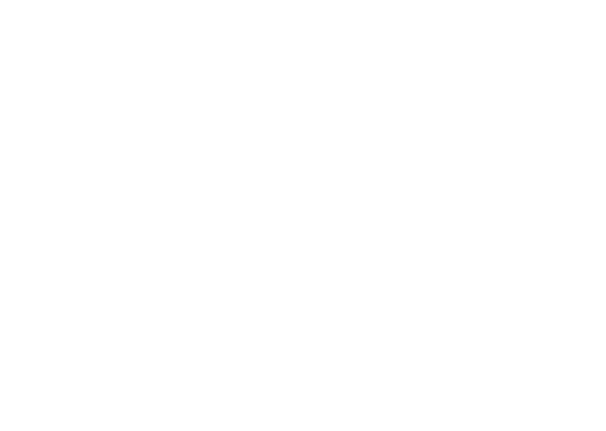 Max_Logo_CMYK_Web
